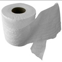 Thumbnail image for Housing Trivia: Who Invented Toilet Paper